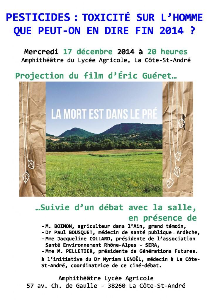 Affiche CinéDébat 17Déc